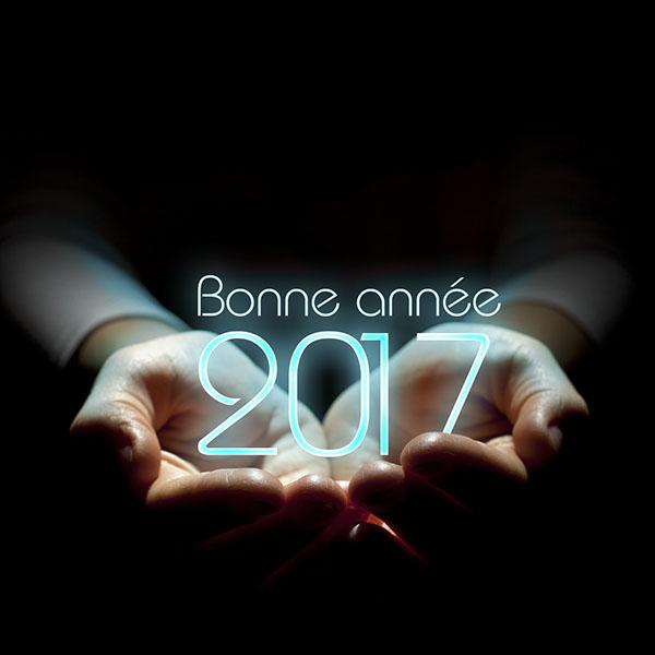 bonne-annee-2017-11